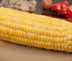 Boiled Corn on Cob