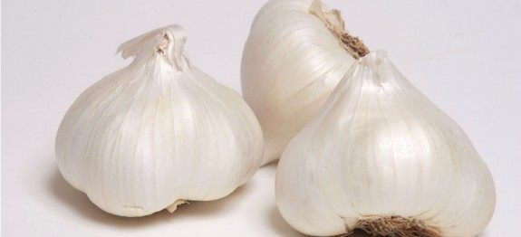 Fresh Garlic Heads