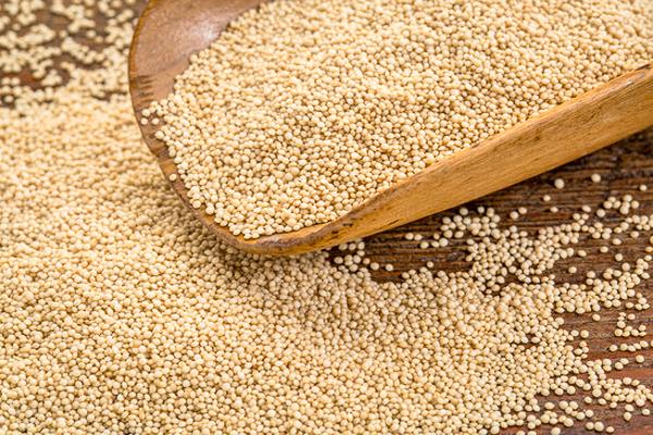 gluten free amarnath grain on a rustic wooden scoop